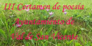 certamen-poesia-val-san-vicente